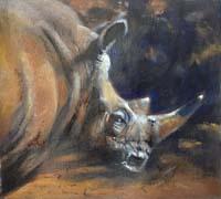 Dusty Rhinoceros