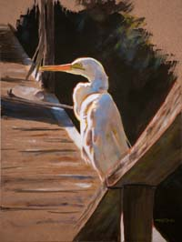 Egret On Dock