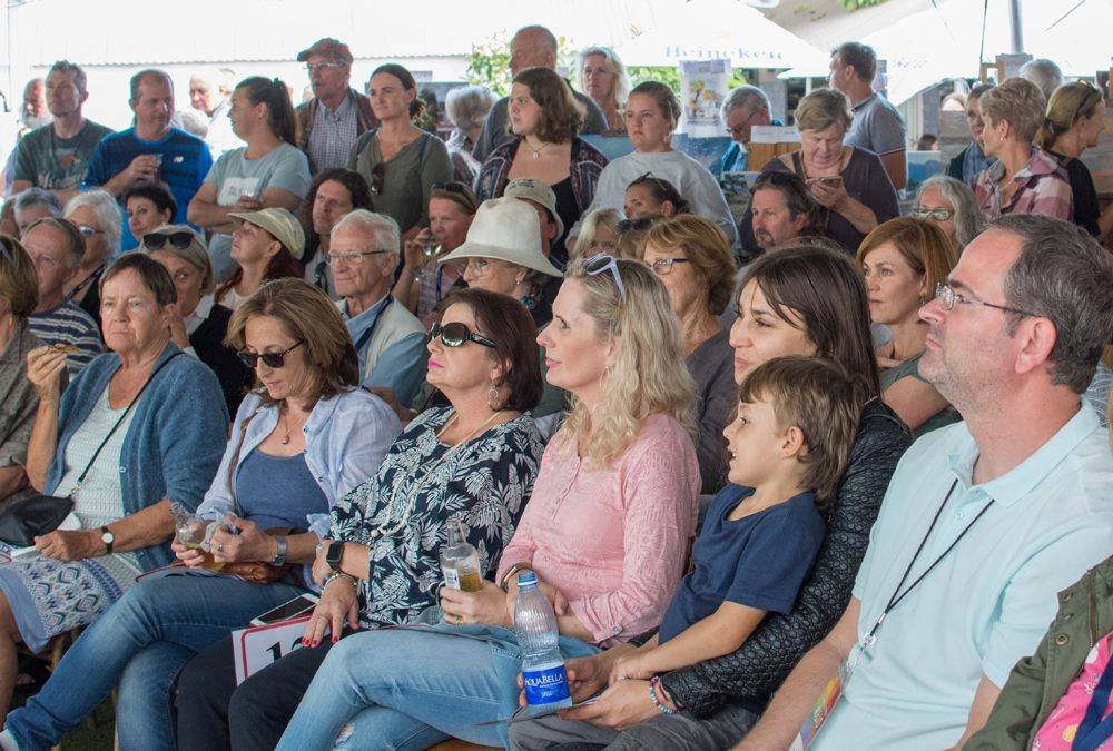 Noordhoek Plein Air Festival And Auction Huge Success!